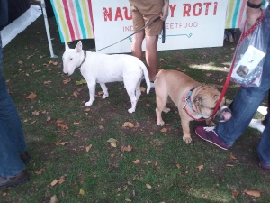 Chiswick House Dog Show, 27 September 2015