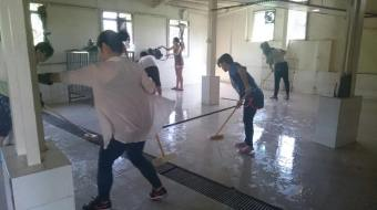 Team members cleaning at the Hong Kong dog shelter