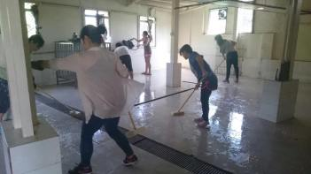 Team members cleaning at the Hong Kong dog shelter