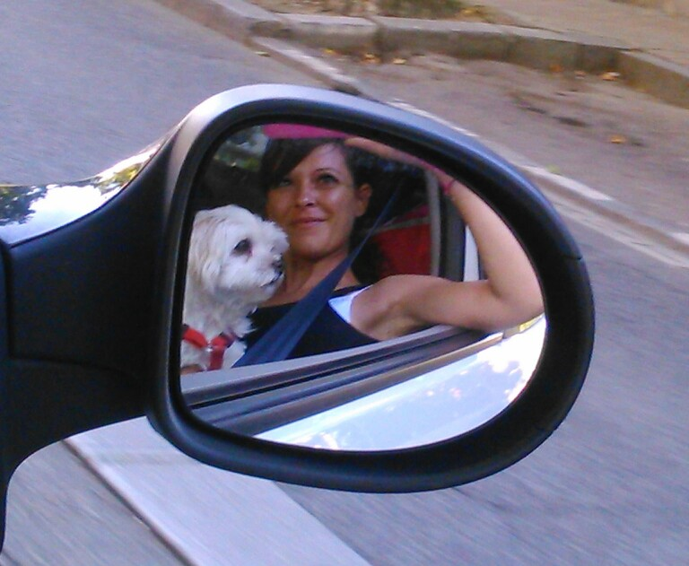 Little dog and his owner in car mirror