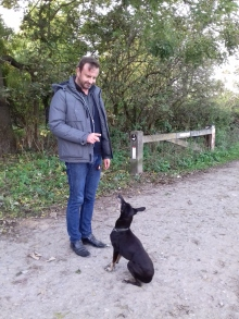 Jambo theManchester Terrier male in Training with his owner