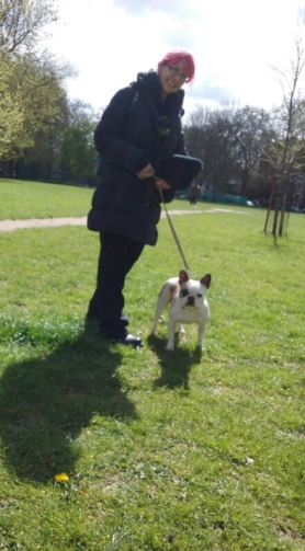 Millie, our French Bulldog, out during her dog Day Care