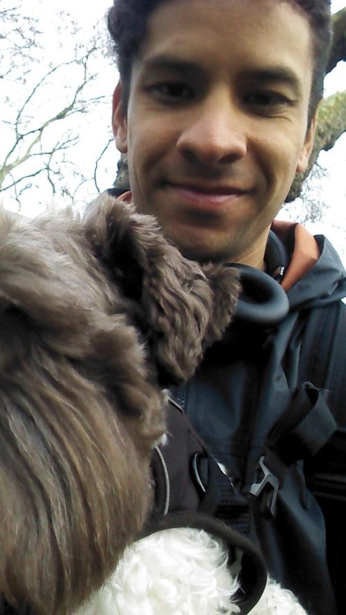 MONTGOMERY 'MONTY', THE MINIATURE SCHNAUZER, FOR HIS DOG WALKING !!