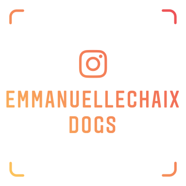 Ongoing- EmmanuelleChaix Instagram for Our Clients 051218